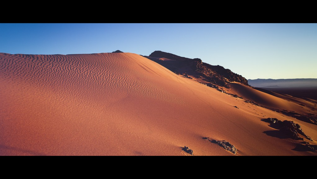 A desert dune lit by early sunrise light