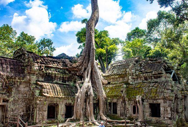 Angkor Wat - Ta Prohm