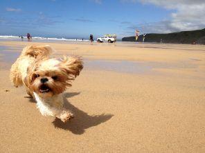 Billy Running Madly