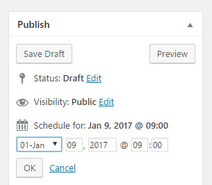 Wordpress publish settings. WordPress training.