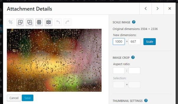 Wordpress training. Resizing images.