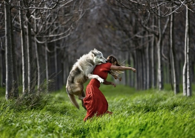 wolf-red-riding-hood