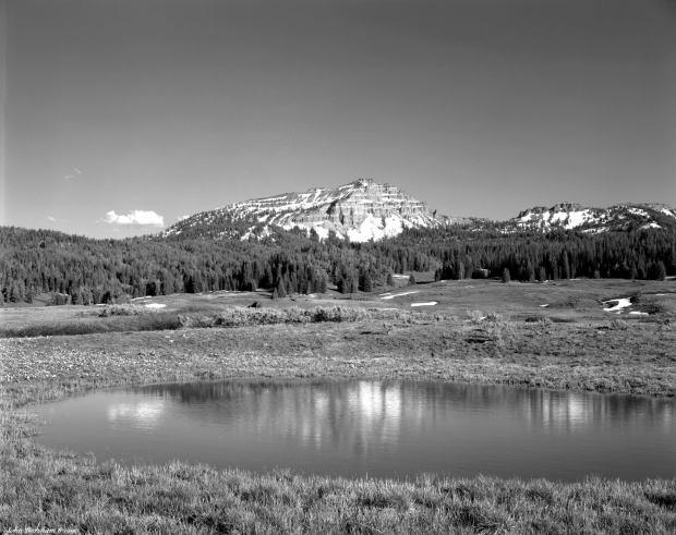 6-24-1990 Teton National Forest-Wyoming-Linhof Techika V 4x5 camera-150mm Schneider Symmar S lens-K2 filter.-Kodak Tmax 100 4x5 film-Kodak Tmax RS developer.