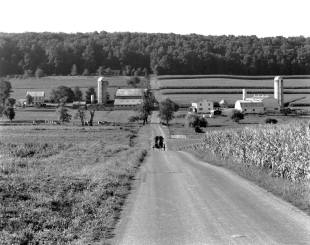 7-1983 Amish Country-Lancaster County PA-4x5 Cambo camera-TXP 4x5 film-HC110B developer.