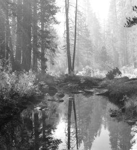 Yosemite 9-1999 120 film Hasselblad-80mm Zeiss Planar.