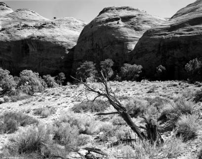 10-3-1993 Mistery Valley Arizona-Linhof Technika V 4x5 camera-120mm Schneider Super Symmar HM lens-K2 filter-Kodak Tmax 100 4x5 film-PMK Pyro developer. See Translation