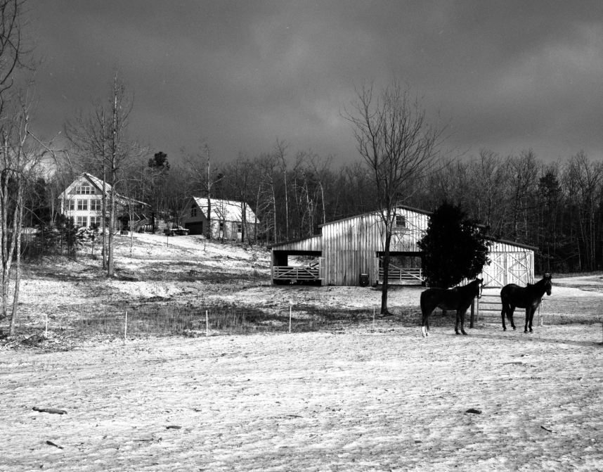 1-24-2003 Peacetree Farm Lookout Mountain Alabama-Pentax 6x7 camera-75mm lens-Ilford HP5+ 120 film-Kodak D76 developer.