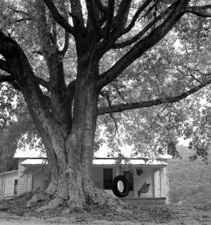 9-20-1998 Hattie Sizemore-Sizemore farm-near Attalla Alabama-Hasselblad camera-80mm Zeiss Planar-Kodak Tmax 100 120 film-PMK Pyro developer.