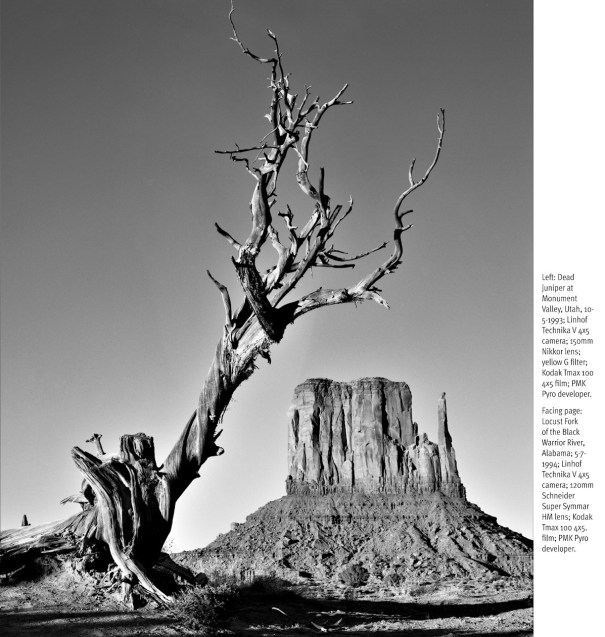 Changing Moods - Sixty Years in Black and White by John Alexander Dersham - Juniper at Monument Valley
