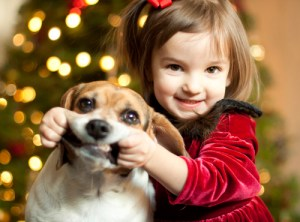 child-christmas-cute-dog