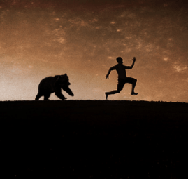 pursued-bear