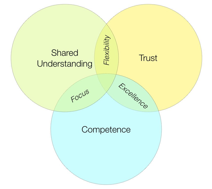 The three elements of autonomous teams: competence, shared understanding, and trust