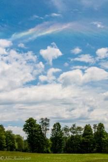 Afternoon cumulus gather