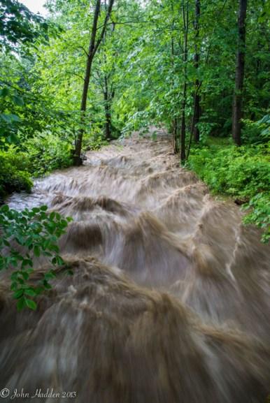 High water in Fargo Brook