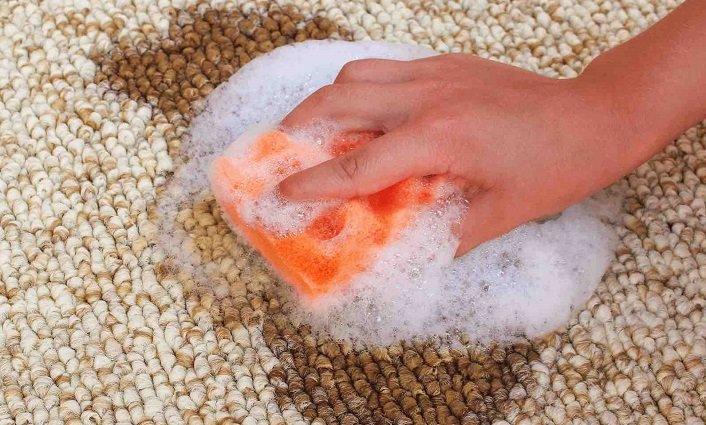removing fresh blood