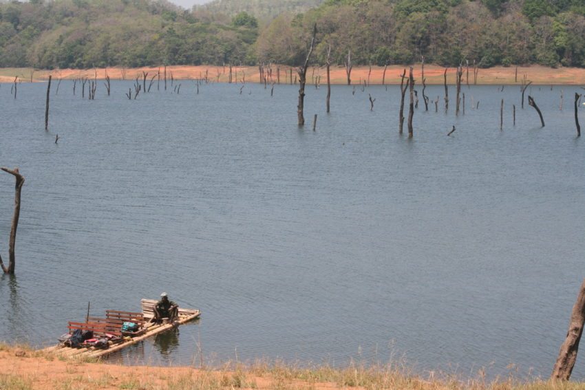 Periyar Tigre Reserve light on tigers but big on bliss