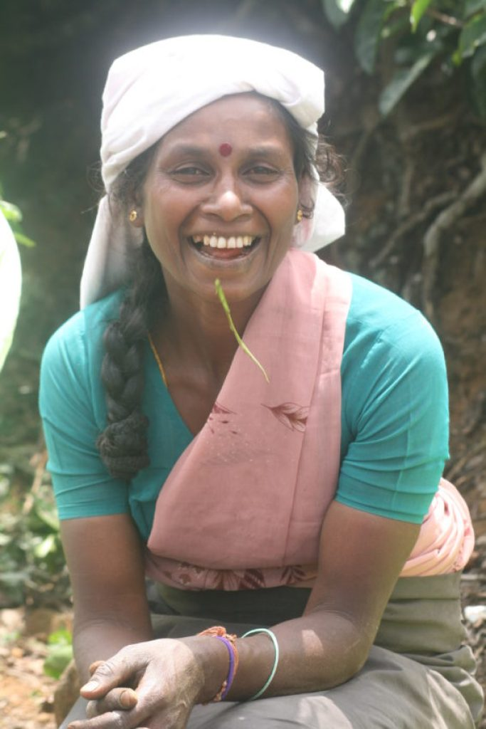 This tea picker won my  heart and about 12 cents.