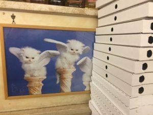La Gatta kitty angels