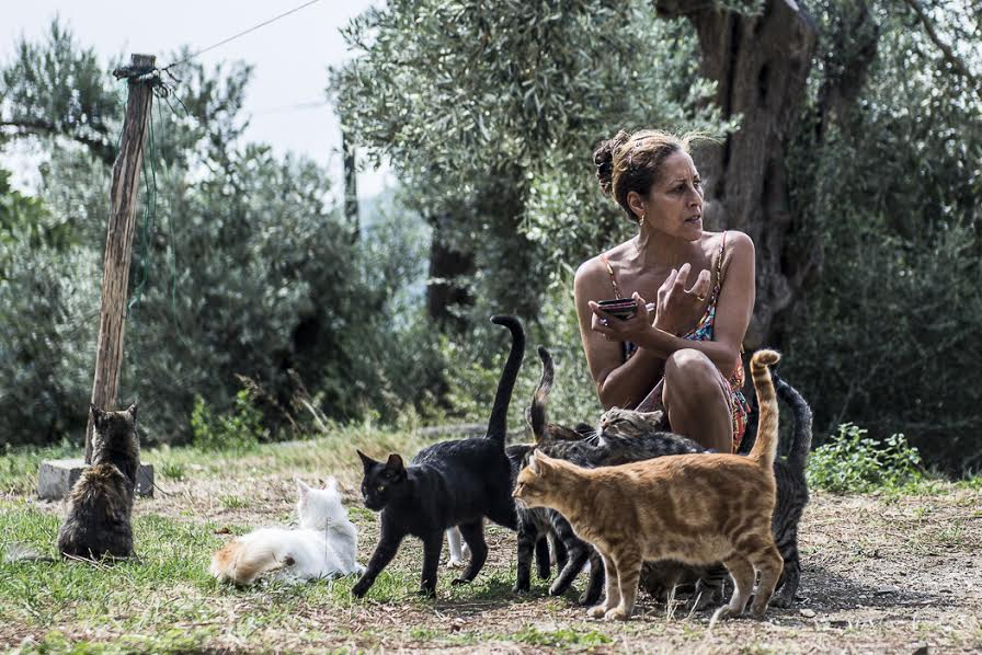 Sharon Hewing started the Skiathos Cat Welfare Association in 2007. Photo by Marina Pascucci