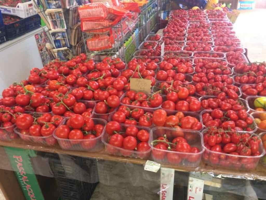 Tomato production is huge in Agro Pontino.
