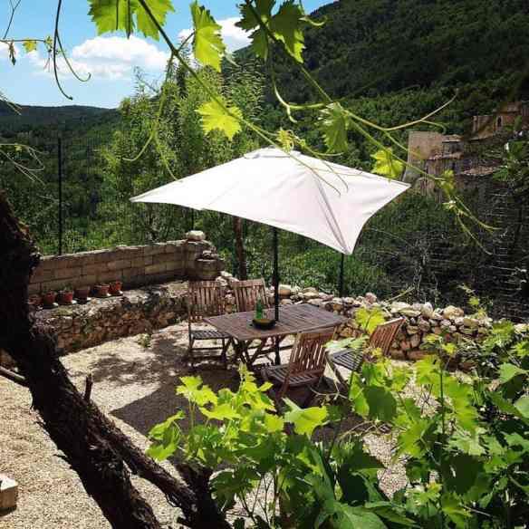 The garden. Jamie Abbott photo