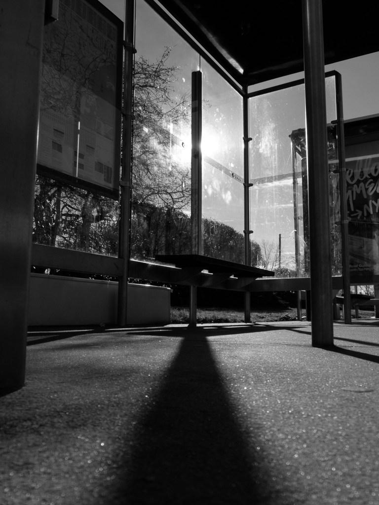 Bus Stops 13