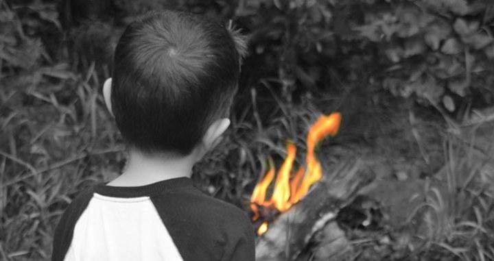 Juvenile Animal Cruelty and Firesetting Behaviour