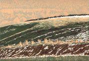 Reduction Linoprint, 37 x 25cm. Edition of 20 prints. £140