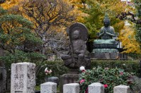 Sensoji Temple Gardens - pic 2