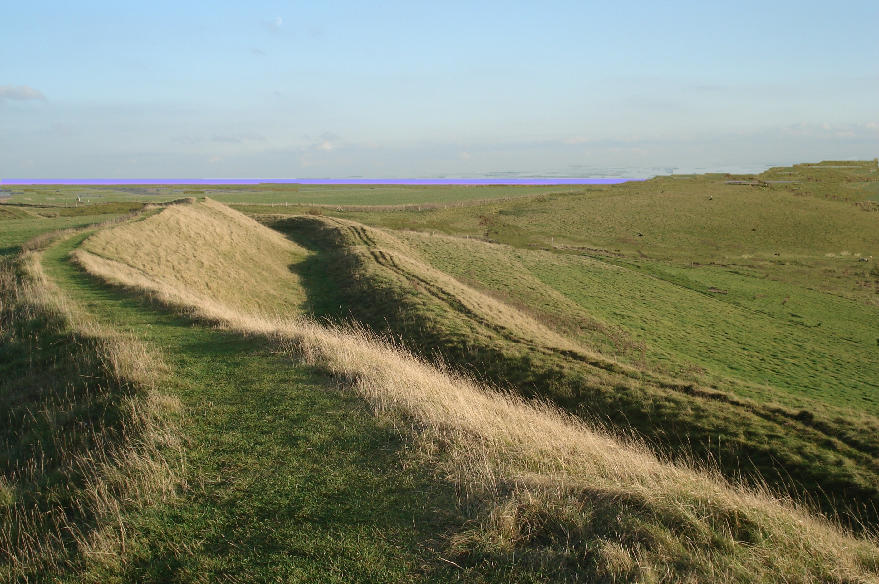 paths in a landscape