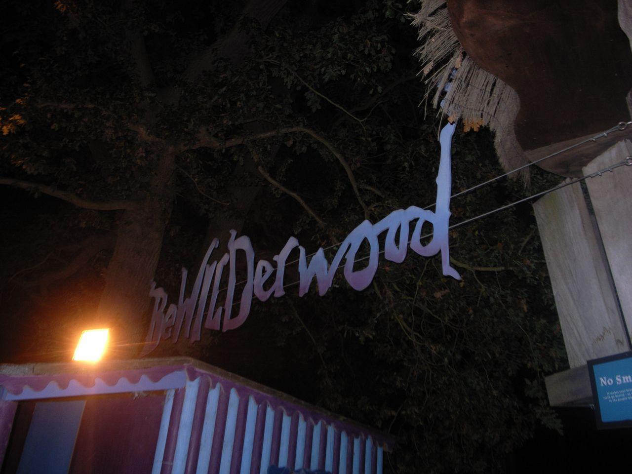 BeWILDerwood at night