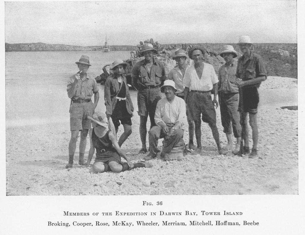 Arcturus Staff in Galapagos