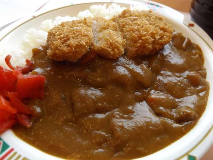 pork cutlet curry photo