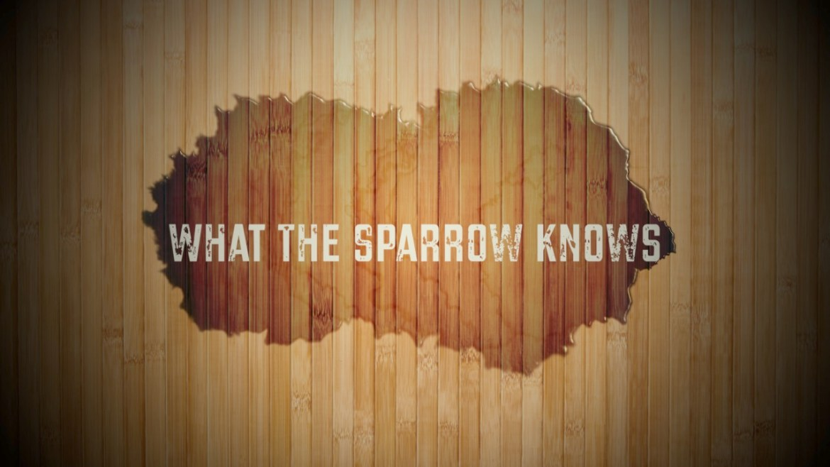 Southern Gospel, Behind The Song, Southern Gospel Song, Southern Gospel Songwriter, What The Sparrow Knows, Matthew 6:26