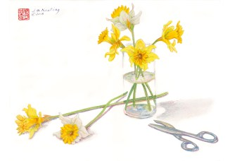 Six Daffodils - Watercolor - 11 x 15 inches