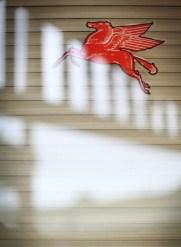 Pegasus in Lockhart