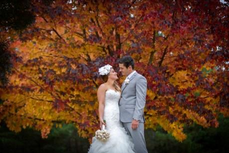 Wedding at Feathertop Winery