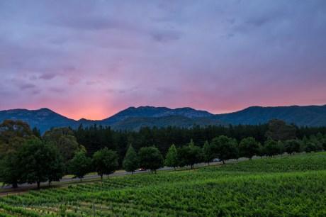 Feathertop Winery sunset wedding