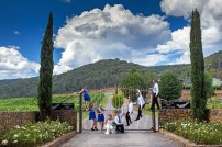Feathertop Winery Wedding 3