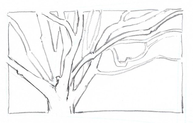 A frame sets the drawing off nicely and emphasizes the interesting negative spaces between the branches.