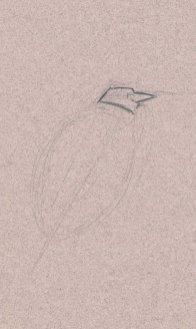 Start with a light loose graphite pencil line to block in the posture and proportions of the heron. Then look at the shape of the head. Don't think of it as a head, but an angular abstract shape.
