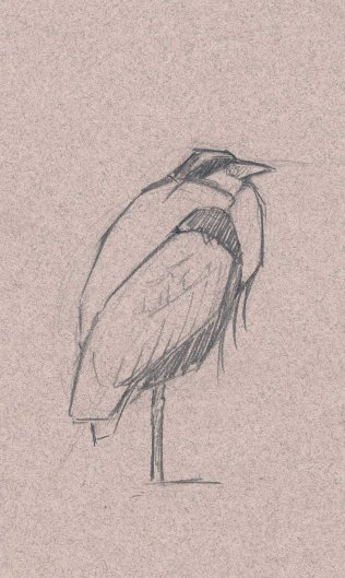 Add value and detail and you have a heron.