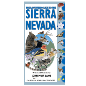 sierra-nevada-guide