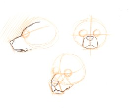 Draw in the muzzle. Look for drooping skin around the corner of the mouth. The negative shape above the side-view is important to observe. it can be flat, angled up with a forehead as in this case, or angled back