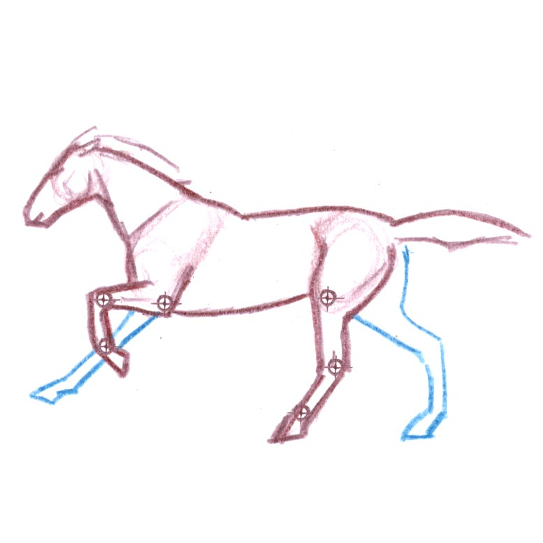 Drawing Mammals: 3/4 view, fur texture, and gaits (video workshop)
