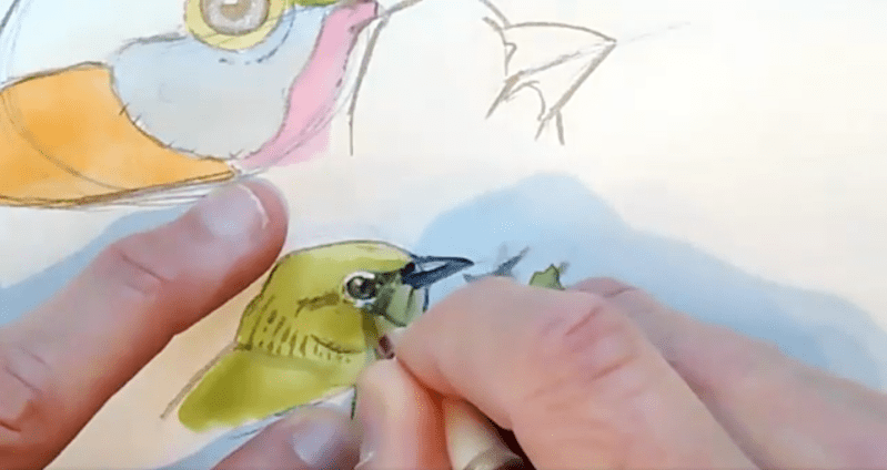 Suggesting detail on  bird heads and wings