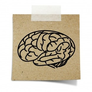brain-hand-drawn.jpg?resize=312%2C311&is-pending-load=1#038;ssl=1
