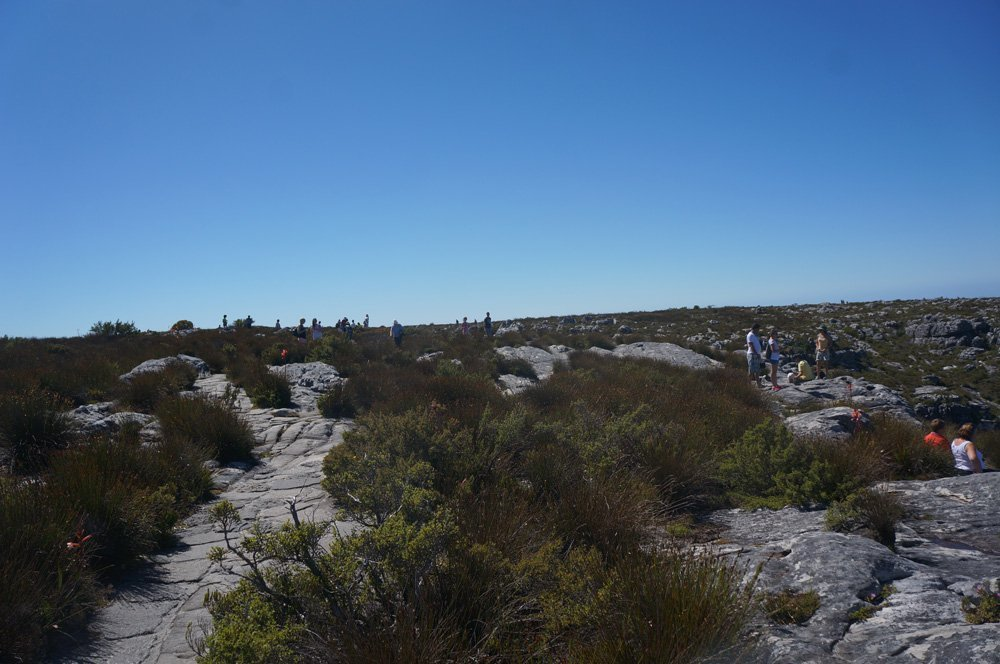table mountain summit cape town