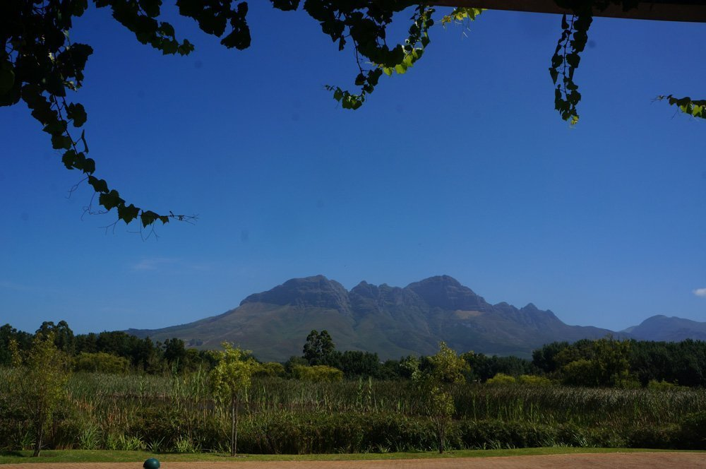 View of the Mountains from Morgenster wine farm in Somerset.