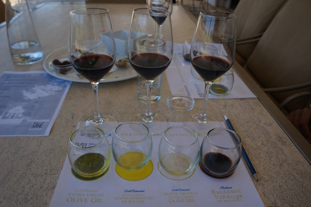 Wine and olive oil tasting at Morgenster!